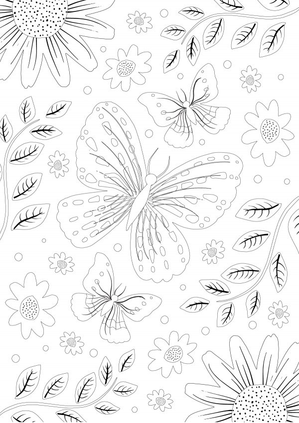 clipper butterfly colouring sheet