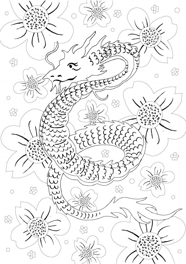 clipper Dragon colouring sheet
